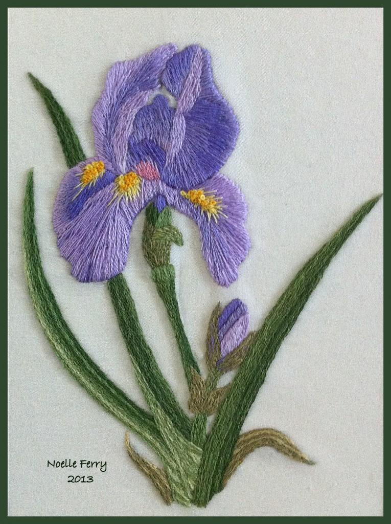 Tanja Berlin Iris