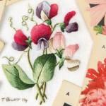 Issue 84 Trish Burr