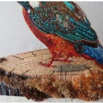 SF Elza Bester Common Kingfisher