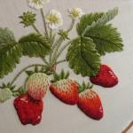 Okyos Strawberries