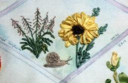 Wild sorghum, snail and lion mane daisy